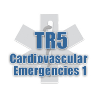 TR5 - Cardiovascular Emergencies 1