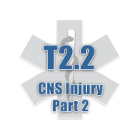 T2.2 CNS Injury Part 2