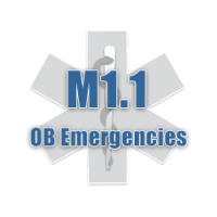 M1.1 OB Emergencies Part 1