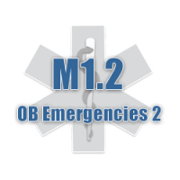 M1.2 OB Emergencies Part 2