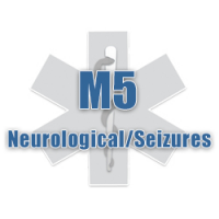 M5 Neurological/Seizures
