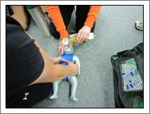 EMT students practice infant CPR